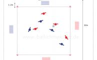 Spielform 4 gegen 4 auf 2+2 Minitore -Spielübersicht und Kombinationsspiel
